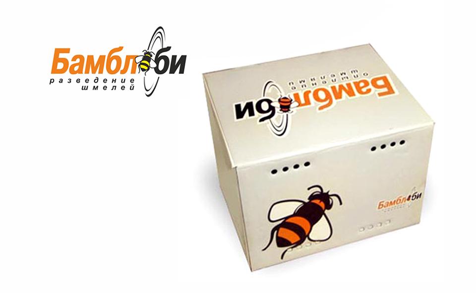 Дизайн упаковки в Воронеже